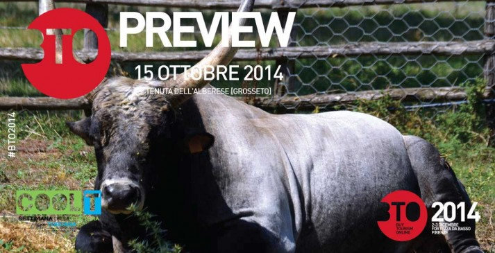 PREVIEW-BTO2014---Engagement_BTOWEB